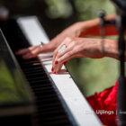 Brenda-Bee-Tailormade-Music-artiestenbureau-7